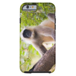 Macaco na selva do parque nacional de Ranthambore Capa Tough Para iPhone 6