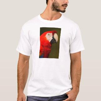 macaw camiseta