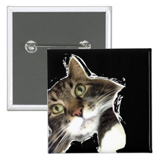 Macio há botão engraçado do quadrado do gato bóton quadrado 5.08cm