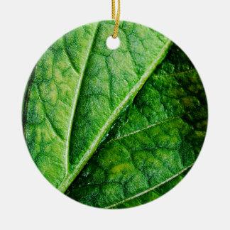 Macro da folha ornamento de cerâmica redondo