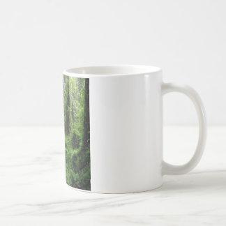 Madeira mais verde da árvore caneca