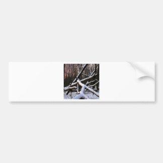 Madeiras brancas do pó da cena do inverno adesivo para carro