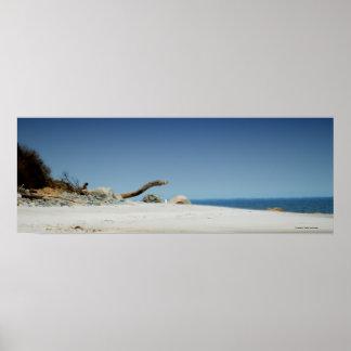 MÃES da ilha da ameixa do poster - foto perto: Joh