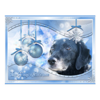 Mágica do Natal - TESS - Photo-3 Cartão Postal