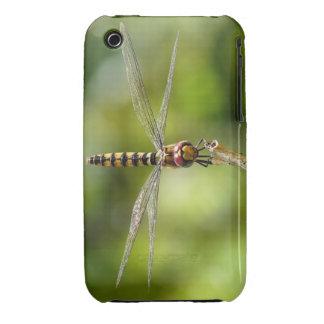 Maior libélula carmesim do planador iPhone 3 capas