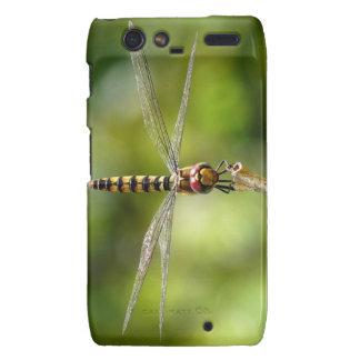 Maior libélula carmesim do planador droid RAZR capas