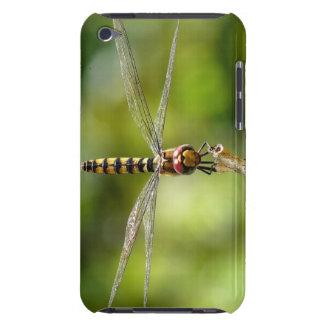 Maior libélula carmesim do planador capa iPod touch