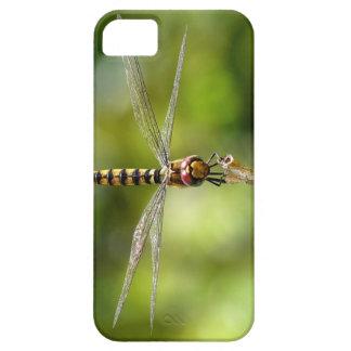 Maior libélula carmesim do planador capas iPhone 5