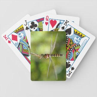 Maior libélula carmesim do planador baralhos de cartas