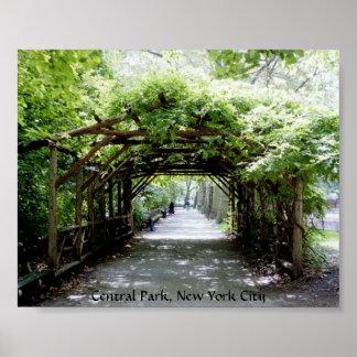 Mandril no Central Park, NYC da passagem Posteres
