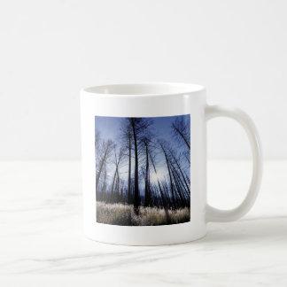 Manhã ensolarada do inverno das árvores da naturez caneca