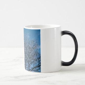 Manhã Frost Caneca Mágica