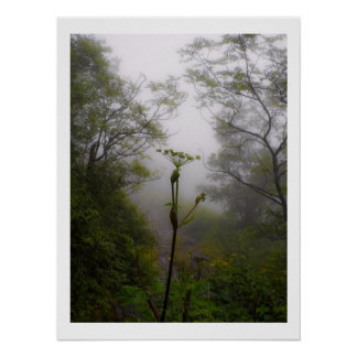 Manhã Mystical na fuga apalaches Posters
