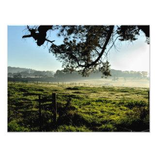 Manhã na fazenda impressão de foto