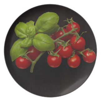 Manjericão dos tomates de cereja prato
