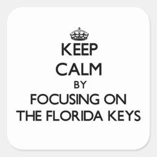 Mantenha a calma centrando-se sobre as chaves de F