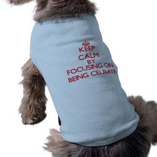 Mantenha a calma centrando-se sobre ser celibato roupas para cães