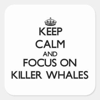 Mantenha a calma e o foco em baleias de assassino adesivo quadrado