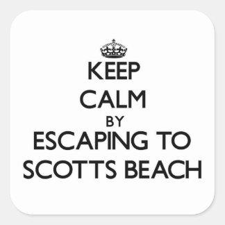 Mantenha a calma escapando à praia New York de Sco