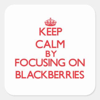 Mantenha a calma focalizando em amoras-pretas adesivo quadrado