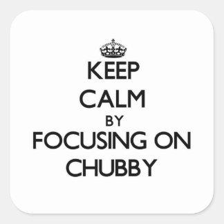 Mantenha a calma focalizando em carnudo adesivos quadrados