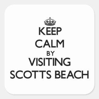 Mantenha a calma visitando a praia New York de Sco