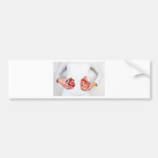 Mãos que guardaram o modelo do órgão humano do rim adesivo para carro