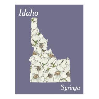 Mapa da colagem da flor de estado de Idaho Cartão Postal