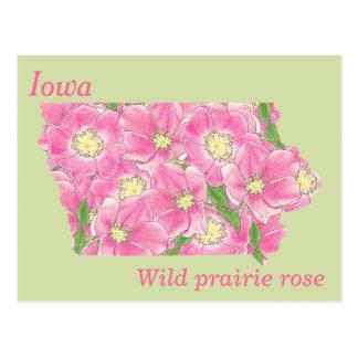 Mapa da colagem da flor de estado de Iowa Cartão Postal