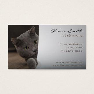 Mapa de visita gato, de veterinário cartão de visita