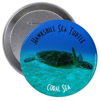 Mar coral do grande recife de coral da tartaruga bóton redondo 10.16cm