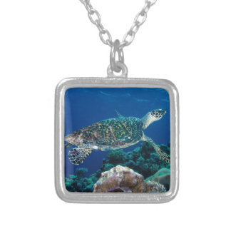 Mar coral do grande recife de coral da tartaruga colar banhado a prata