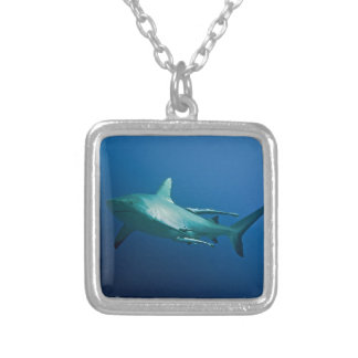 Mar coral do grande recife de coral do tubarão do colar banhado a prata