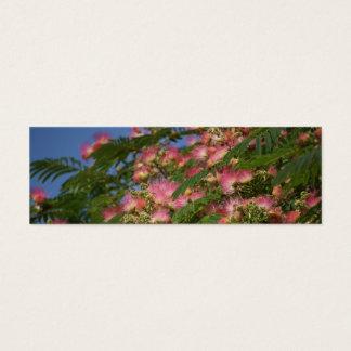 Marcador da foto do primavera e do outono cartão de visitas mini