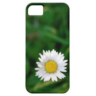 Margarida e grama capas para iPhone 5