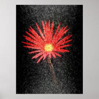 Margarida vermelha na arte abstracta preta do fund poster