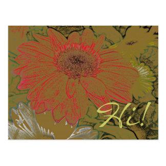Margaridas africanas coloridas olá!! Cartão