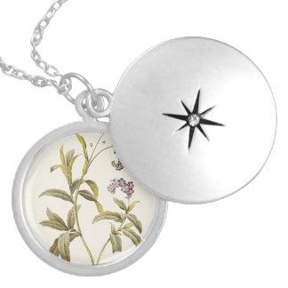 Maria floresce de prata chapeada em volta do colar medalhão