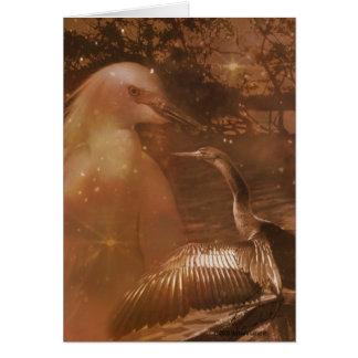 Marismas - parque nacional em Florida Cartão Comemorativo