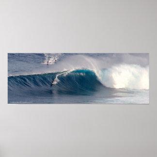 Maxilas que surfam o poster da foto