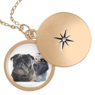medalhão estilo pug