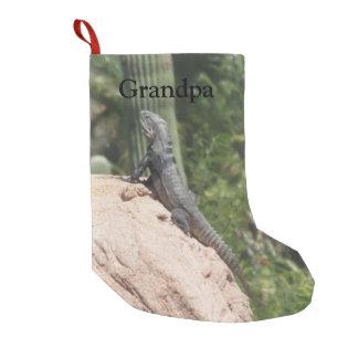 Meia De Natal Pequena iguana Espinhoso-atada