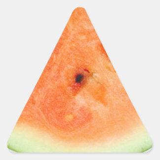 Melancia suculenta 4Aleah Adesivo Triangular