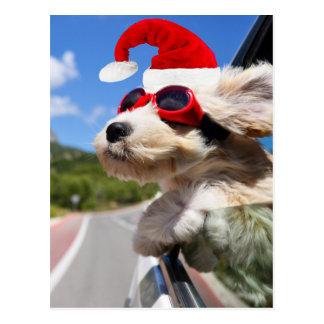 Merry Christmas dog Cartao Postal