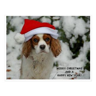 Merry Christmas from Charly Cartão Postal
