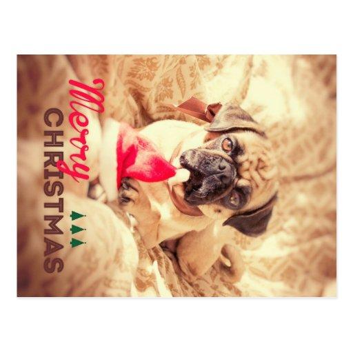 Merry Christmas Pug Cartoes Postais