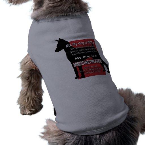 Meu cão não é… roupas pet