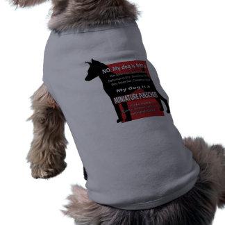 Meu cão não é… camisa sem mangas para cachorro