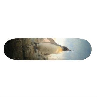 Meu melhor botão shape de skate 18,4cm