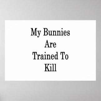 Meus coelhos são treinados para matar pôster